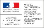 partenaire financier docamex
